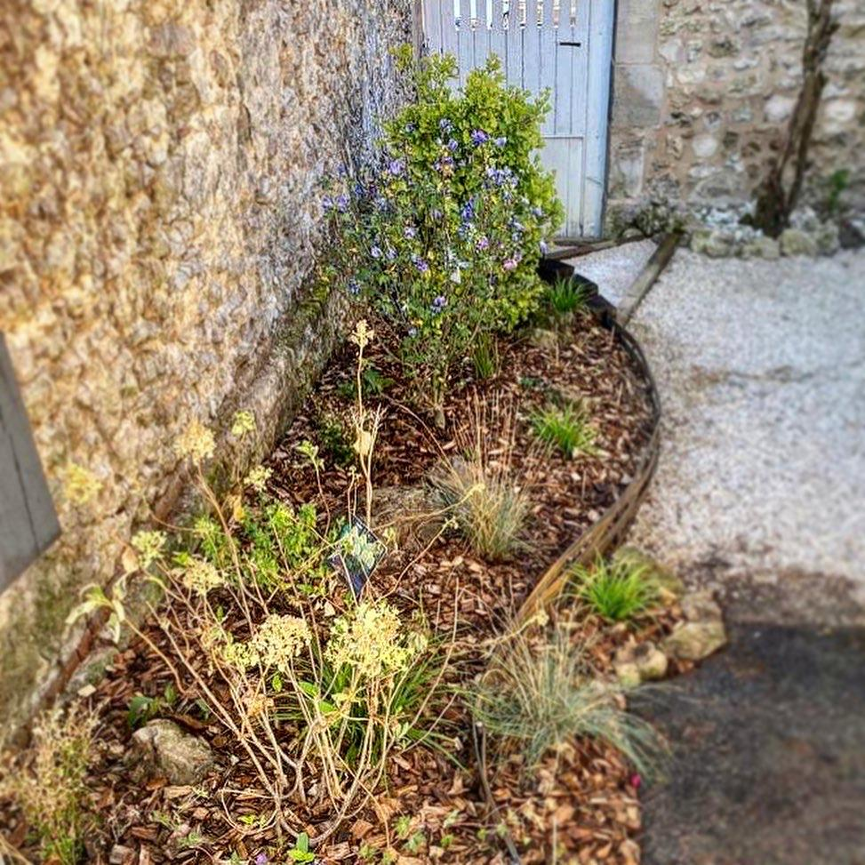 Paysagiste Jardinier Oise Beauvais Compiegne Chantilly Senlis Creil - jardin massif - Gaudion Paysage